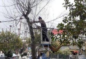 آماده باش نیروهای عملیاتی سازمان سیما، منظر و فضای سبز شهری شهرداری رشت