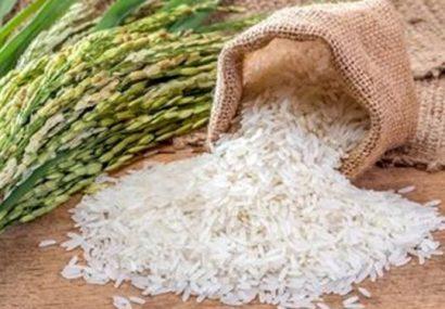 نرخ تبدیل شلتوک به برنج در گیلان اعلام شد